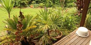 LRB-garden3