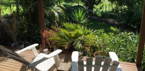 LRB-garden4